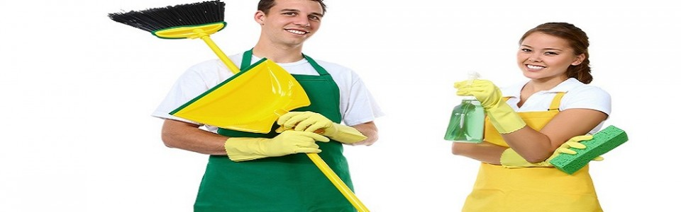 temizliksileder